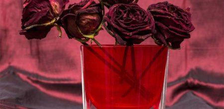 suszone-roze