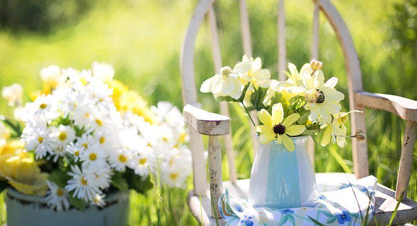 Jak pięknie i funkcjonalnie urządzić ogród?